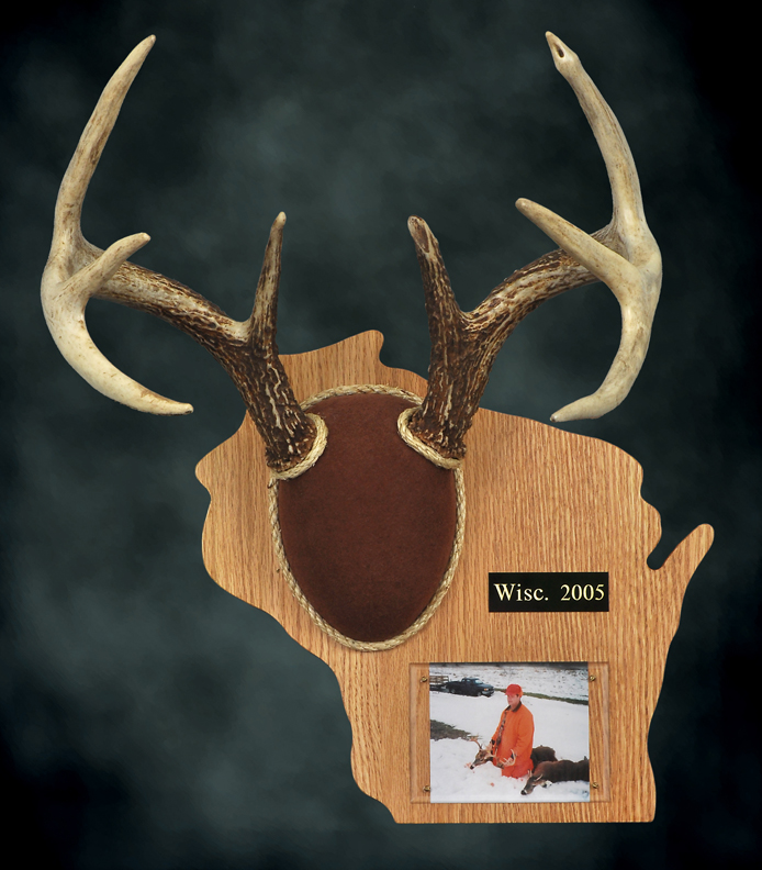 Antler Plaque Template By Deer Search Results Calendar 2015