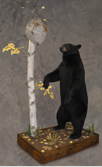 lifesize bear mount